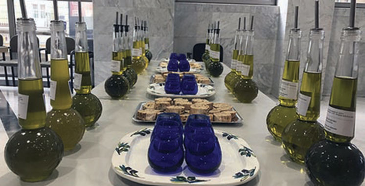Concours international «Mario Solinas 2018» : Trois huiles d'olive vierges extra marocaines primées