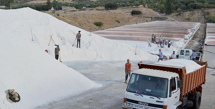 Le secteur miné par l'informel : L'industrie du sel sous surveillance