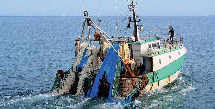 Débarquements de la pêche côtière et artisanale : 1,4 milliard DH généré à fin février