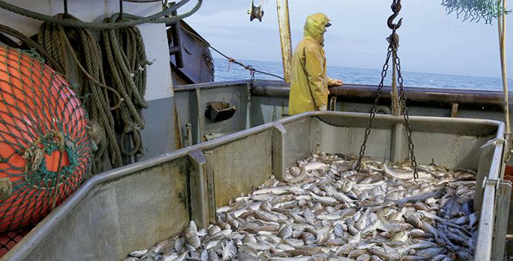 Nouvelles négociations pour l'accord de pêche : Les 13 et 16  avril, deux  rendez-vous importants à suivre