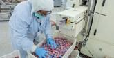 Financement et assistance technique : 400 PME marocaines accompagnées par la BERD