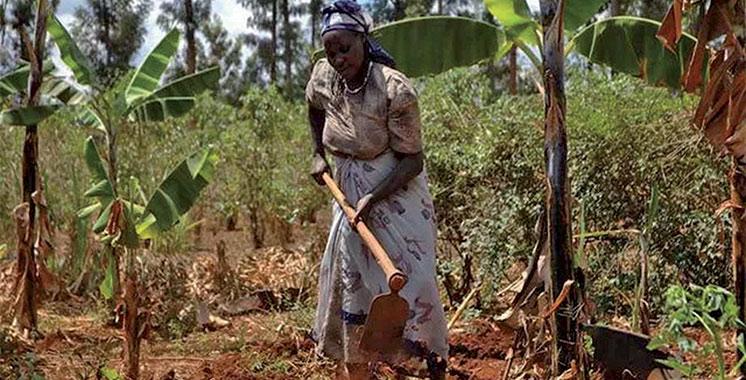 Deuxième édition du congrès AWA  : Le Groupe OCP mise sur la créativité des femmes agricultrices en Afrique