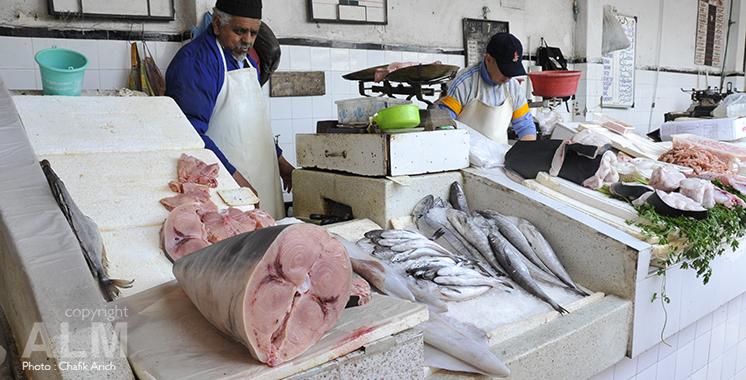 Pêche maritime: Tous les marchés sont servis