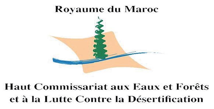 Laâyoune Sidi Mellouk :  Les eaux et forêts démentent tout «crime environnemental» contre la flore