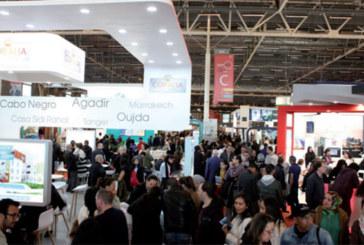Entre Paris, Bruxelles et Abu Dhabi : SMAP Immo, 20 ans de rayonnement à l'international