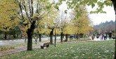 Ifrane : La première session de l'Université  de la nature du 13 au 15 juillet