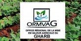 L'ORMVA du Gharb tient son conseil d'administration: Réduction des crédits de report à 153 MDH en 2017 contre 219 MDH en 2016