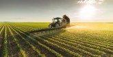 Transformation de l'agriculture en Afrique : Le Maroc a un rôle à jouer