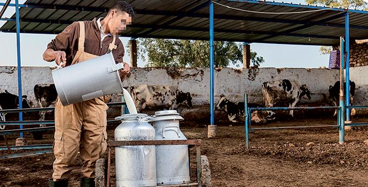La Comader réagit au boycott : 450.000 emplois à sauver dans la filière laitière
