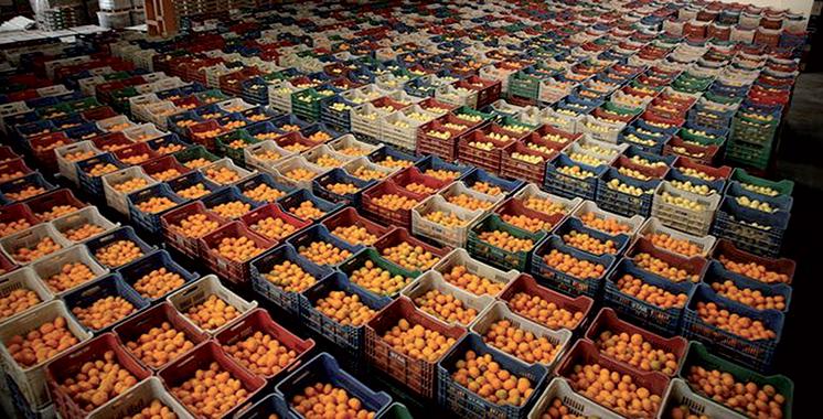 Orange-export