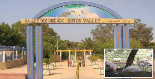 Un million de dirhams pour la Vallée des oiseaux