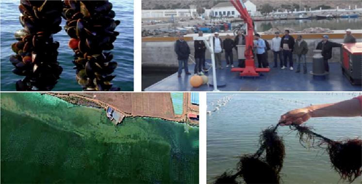 L'ANDA à la rencontre des aquaculteurs de l'Oriental
