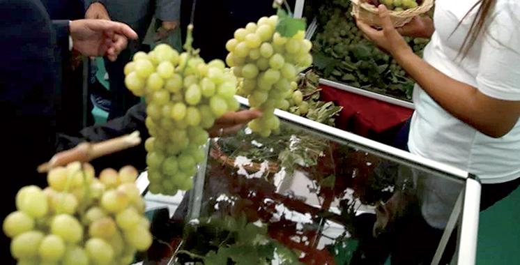 L'ADII et l'Association des producteurs de raisins s'allient
