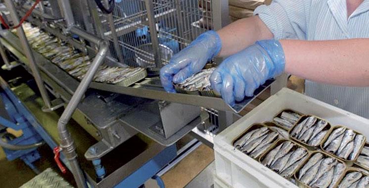 Pour violation du décret-loi relatif à l'état d'urgence sanitaire : Des responsables d'une unité industrielle de conserve de poisson à Safi poursuivis