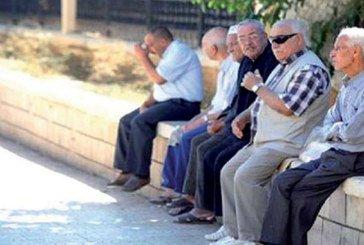 Protection sociale  : Pension de survivants