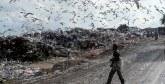 Valorisation des déchets : Ce que propose  la société civile