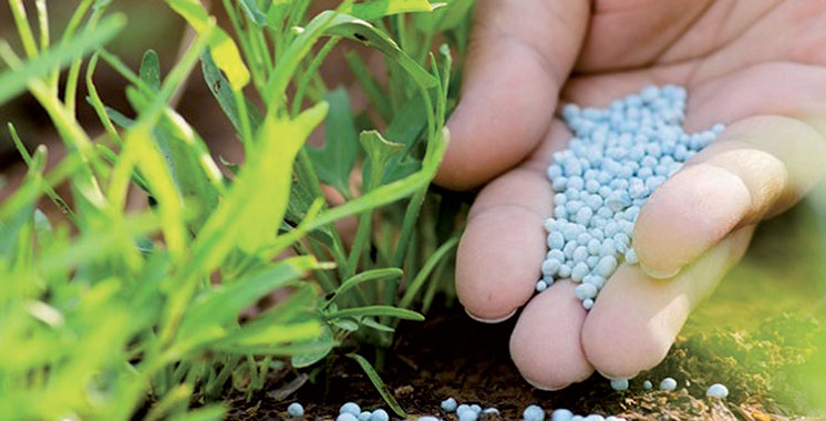 OCP : Bientôt une usine de production d'engrais au Ghana