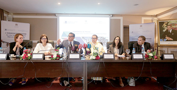 Aquaculture : 400 millions de dirhams investis dans le Souss-Massa