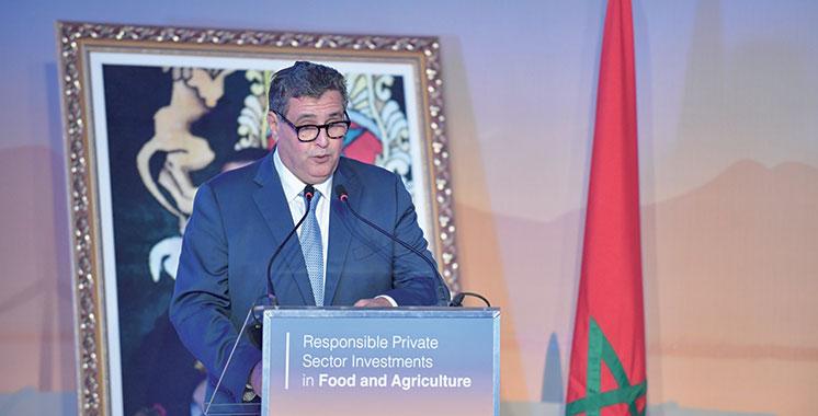 Investissements privés dans l'agriculture: 60 MMDH depuis le lancement du PMV en 2008
