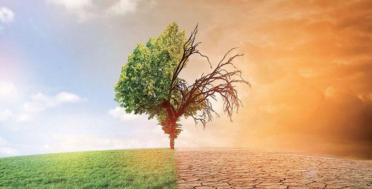 Lutte contre les effets du changement climatique : Le système de Mesure Reporting&Verification lancé au Souss-Massa