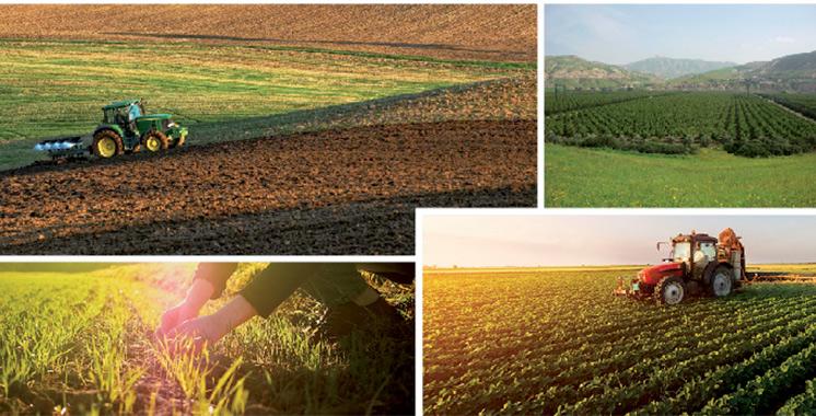 «La saison agricole a démarré dans des conditions plus favorables que la précédente»