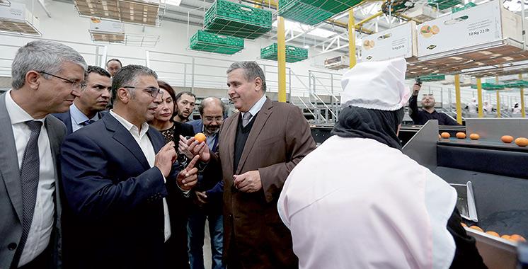 Signature d'une convention et suivi de plusieurs projets : Aziz Akhannouch au chevet de l'Oriental