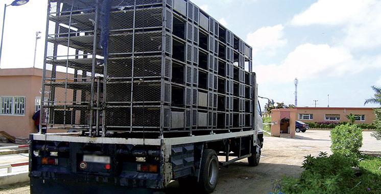 Grève des transporteurs :  La Fisa porte plainte contre le chef de gouvernement