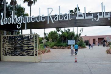 Ouverture prochaine du vivarium du Jardin zoologique de Rabat