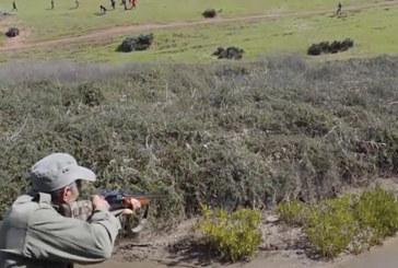 Organisation d'une battue aux sangliers dans  les forêts de Khénifra