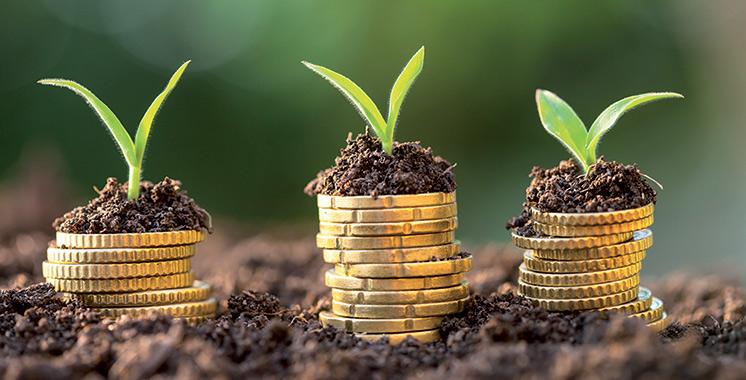 Leasing: Un financement de près de 50 milliards de dirhams alloué à ce jour