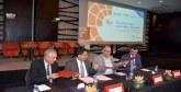 «Taqa pro» : Lancement du label des installateurs dans le secteur du photovoltaïque au Maroc
