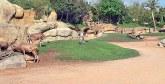 90% des travaux ont été réalisés : Le zoo d'Aïn Sebaâ ne sera livré qu'en avril 2019