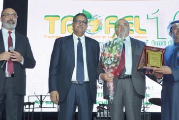 Trofel 2019 : Les meilleurs professionnels  de la filière distingués à Agadir