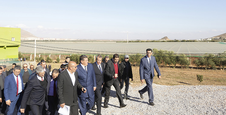 Développement agricole : Une bonne dynamique s'opère dans l'Oriental