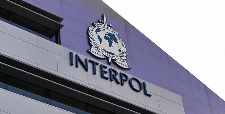 Le Maroc participe à une vaste opération d'Interpol : Plus d'une douzaine de terroristes arrêtés