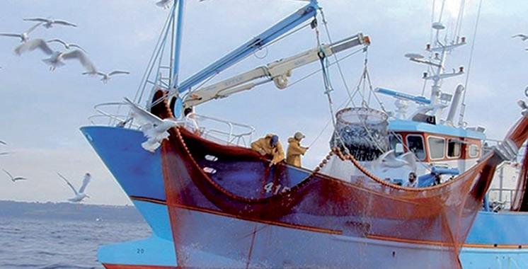Accord de pêche : L'Espagne déterminée à défendre les intérêts de ses pêcheurs dans les zones marocaines