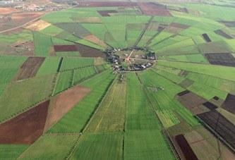 Fonciers agricoles relevant du domaine privé de l'État : Plus de 1.000 hectares mobilisés pour le Plan Maroc Vert à fin juin