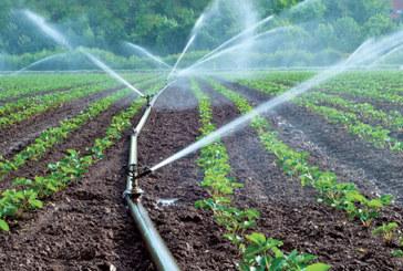 Agriculture, infrastructures, industrie : Le Maroc érigé en exemple par la BAD
