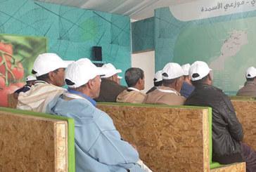 Dédié à la culture de l'olivier : Le programme Al Moutmir d'OCP sillonne  cinq provinces