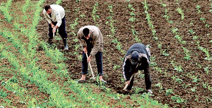 La Mamda et l'AMMS signent  une convention pour accompagner les agriculteurs