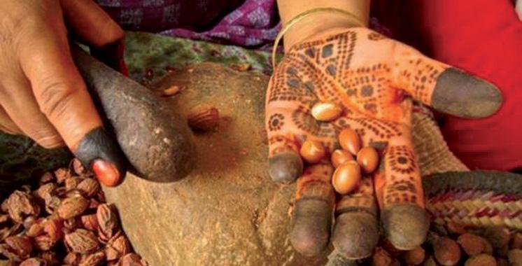 Filière arganier : Démarrage bien réussi  du projet Refam