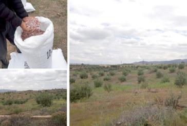 OCP multiplie ses actions sur le terrain auprès des agriculteurs