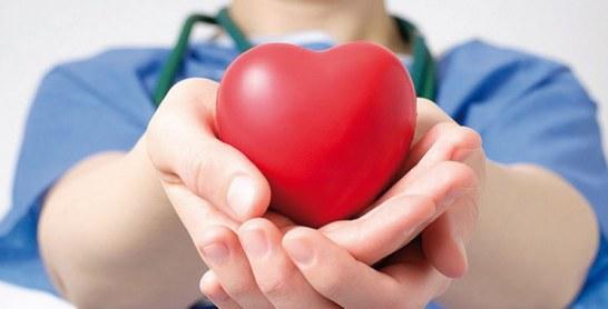 La greffe et le don d'organes en débat à Tanger