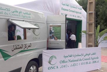 Conseil agricole : L'ONCA met en place des guichets thématiques