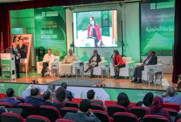 1er Forum international de Laâyoune sur l'agriculture biosaline : Les recommandations