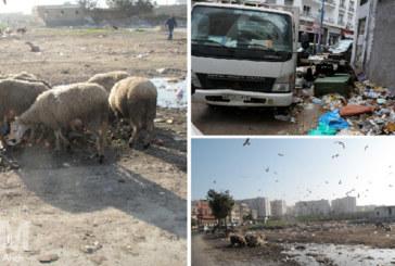 Gestion des déchets à Casablanca pendant le Ramadan : Les responsables manquent à l'appel