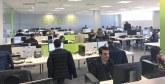 Pour faire face à la fuite des cerveaux : Le secteur IT réagit avec flexibilité  et innovation