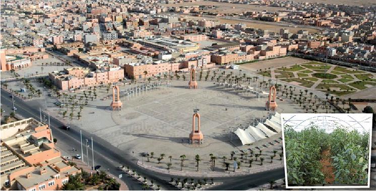 Laâyoune-Sakia El Hamra : 41 projets d'investissement, pour un montant de 5.530 MDH, validés au 1er semestre