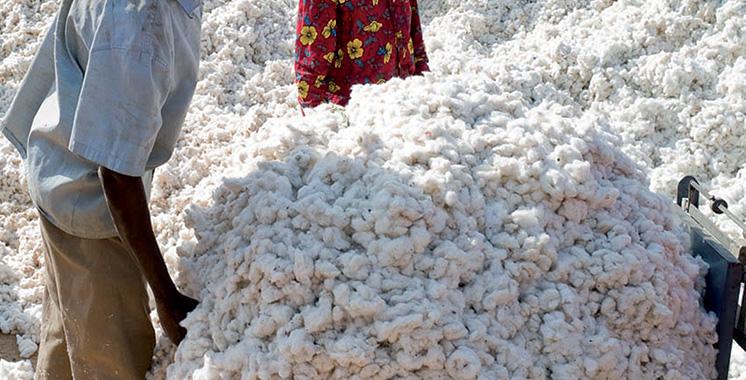 Côte d'Ivoire : Atlantique Assurances, filiale de la BCP, lance une offre dédiée aux agriculteurs de coton