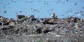 La mobilisation pour la fermeture de la décharge de Tanger s'accentue